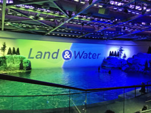 Land and Sea Show at the Shedd Aquarium Chicago with Kids