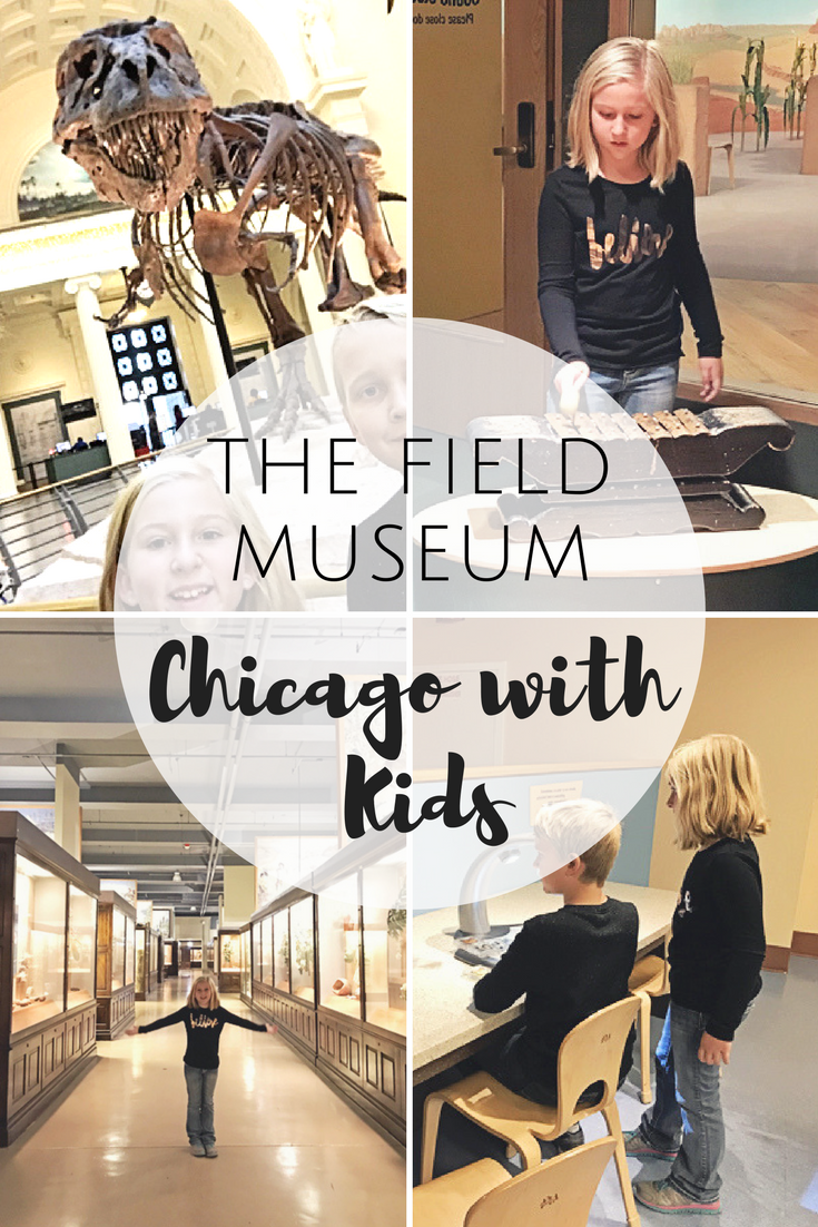 The Field Museum Chicago with Kids