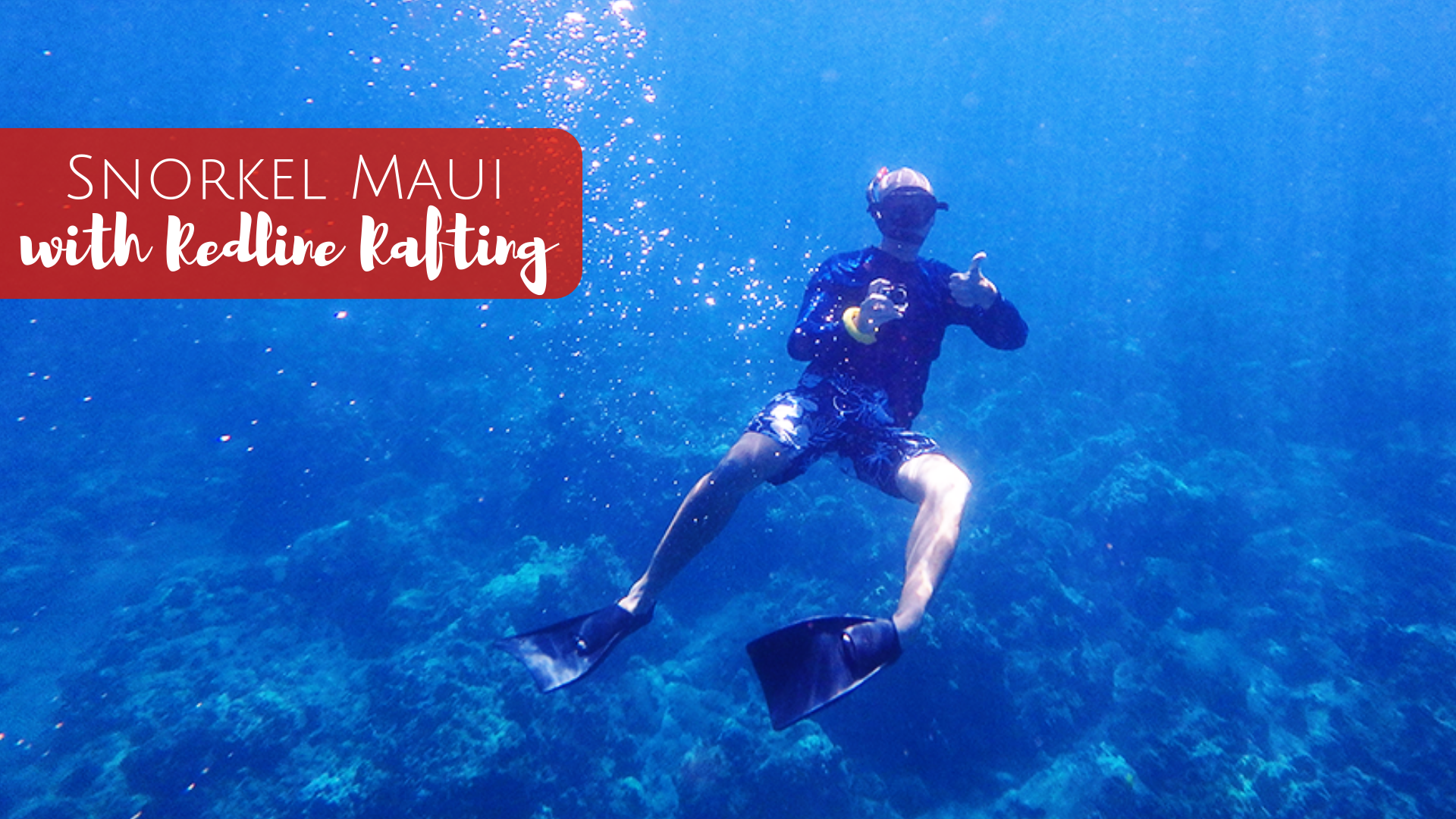 Snorkel Maui with Redline Rafting Tours