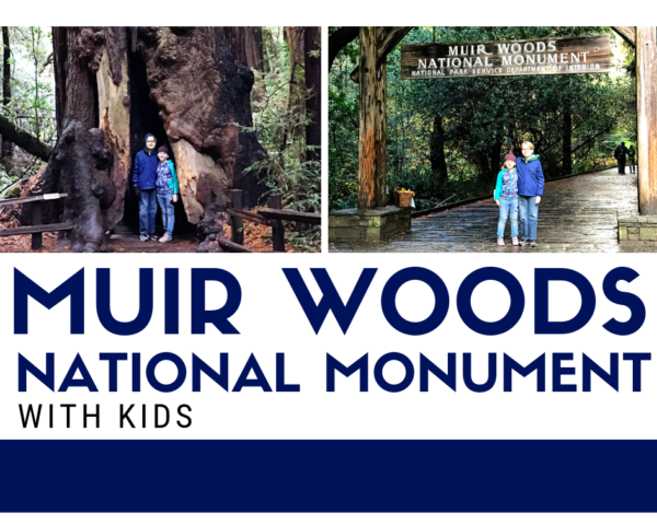 Muir Woods National Monument with Kids - San Francisco California
