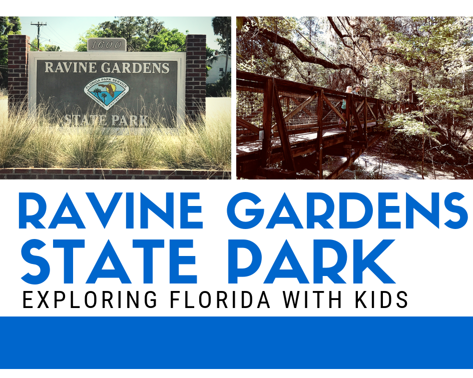 vRavine Gardens State Park in Florida with Kids