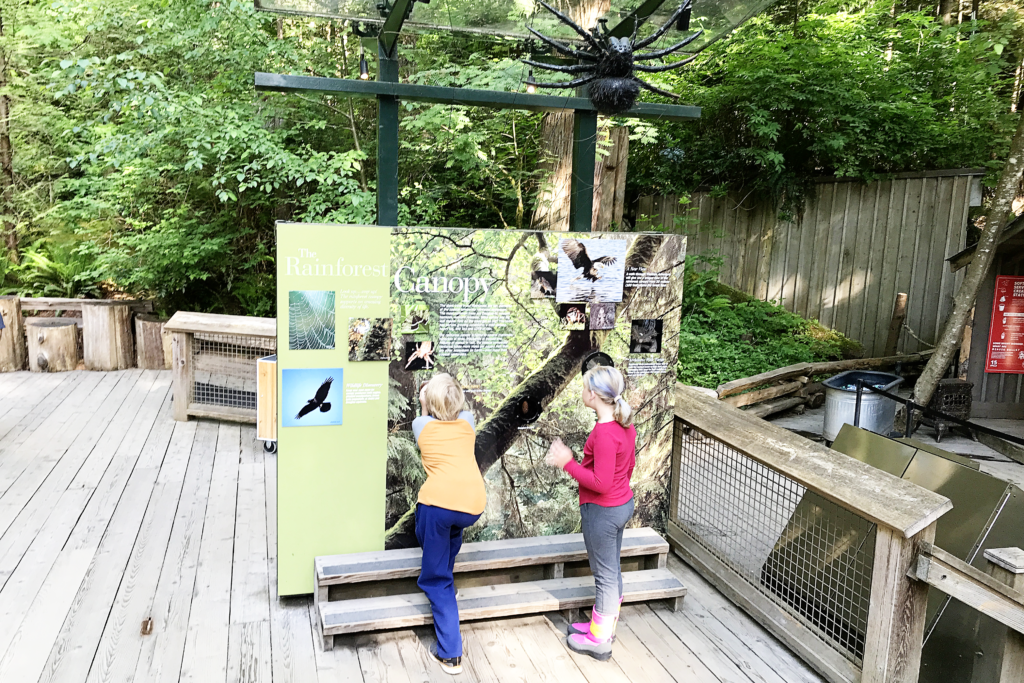 Visiting Vancouver with Kids - the Capilano Suspension Bridge Park