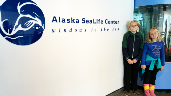 Alaska SeaLife Center in Seward, Alaska - Perfect place for kids!