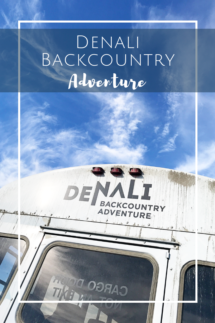 Denali Backcountry Adventure Tour with Kids