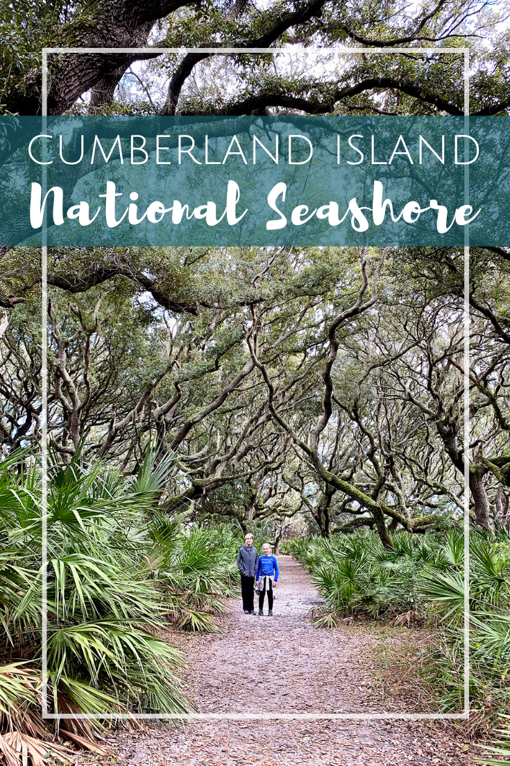 Visiting Cumberland Island National Seashore in South Georgia with Kids