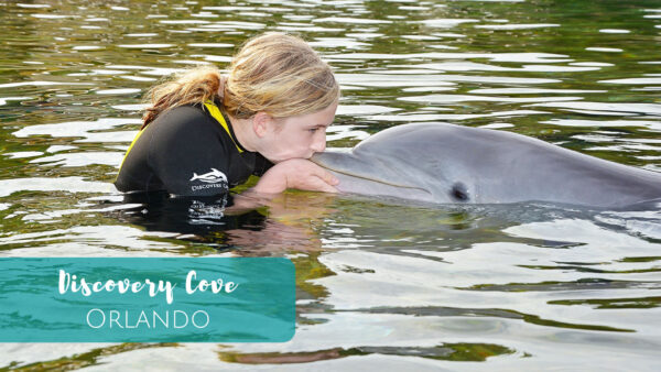 Swim with dolphins at Discovery Cove in Orlando, Florida