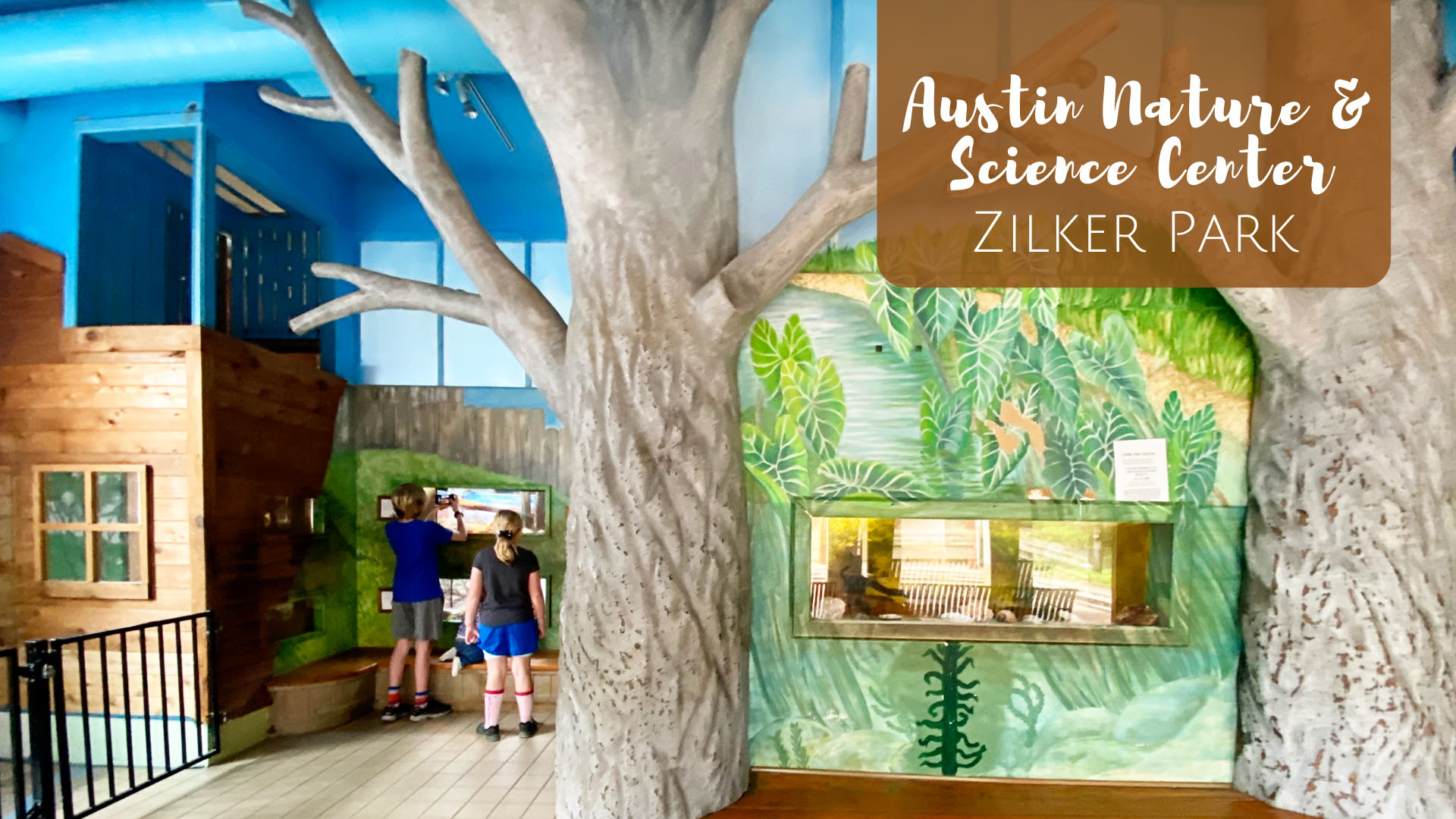Austin Nature & Science Center at Zilker Park Preserve in Austin, Texas